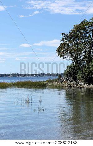 Pretty shoreline of a calm bay on a bright sunny day.