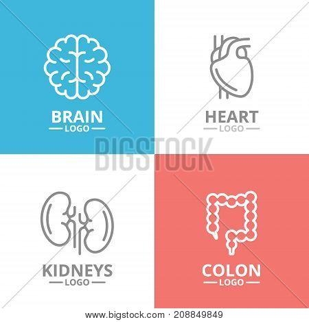 Set of brain and heart, kidney, colon logo or insignia, emblems, labels and badge. Vector line style