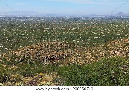 Bird's eye view of Tucson from Mount Lemmon in Arizona, USA in the Santa Catalina Mountains located in the Coronado National Forest with blue sky copy space.