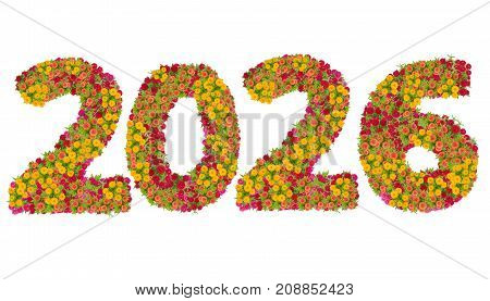 Numbers 2026 made from Zinnias flowers isolated on white background with clipping path. Happy new year concept