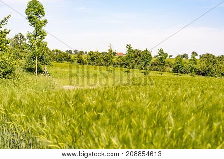 idyllic rural landscape at spring time in Hohenlohe a district in Southern Germany