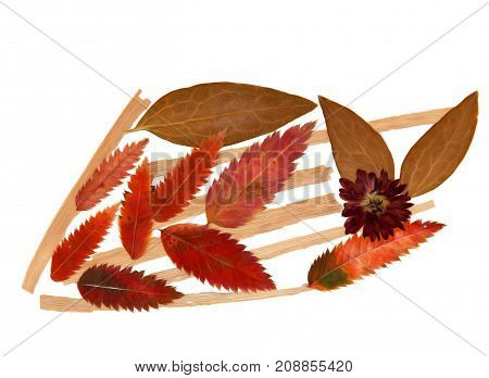Dried Corn Leaves Arrow, Roughage Autumn Fall Leaf,  Wooden Planks Painting