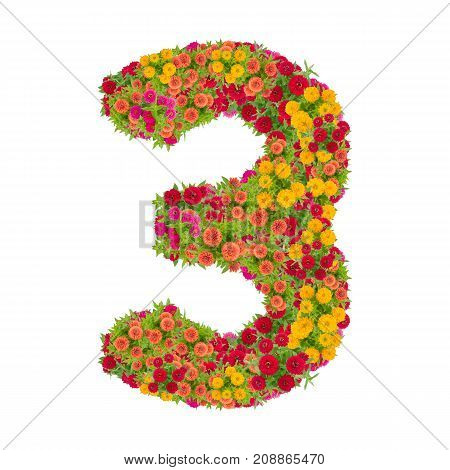 number 3 made from Zinnias flowers isolated on white background.Colorful zinnia flower put together in number three shape with clipping path