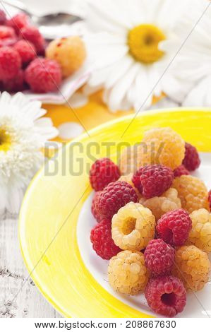 Fruit ice cream yellow raspberry with mixed berries raspberries on a plate on the background of large daisies. Close-up. The vertical frame.