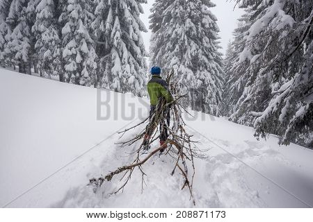 Adventurer, In Snowshoes, Drags An Armful Of Firewood