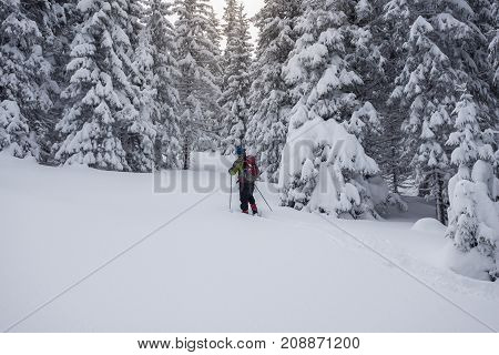 Traveler, With Backpack, Is Walking In Deep Snow
