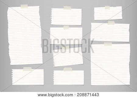 White ripped striped note, notebook paper for message or text stuck with sticky tape on gray background