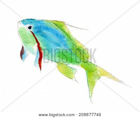 The green anthias fish watercolor illustration isolated on white background.