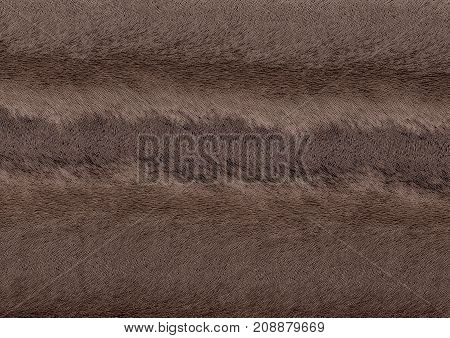 full frame abstract fine lined dark brown pattern