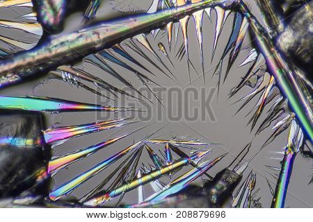 macro shot of growing microcrystals of soda lye in polarized light