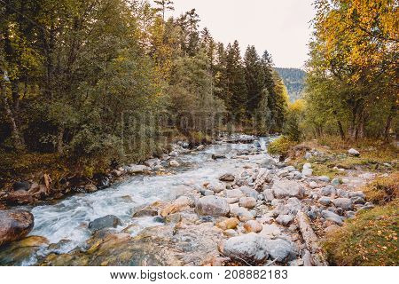 Mountain river and autumn wild forest at sunset