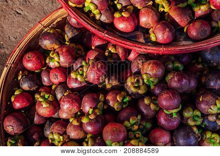 Mangosteen Fruits At The Street Market