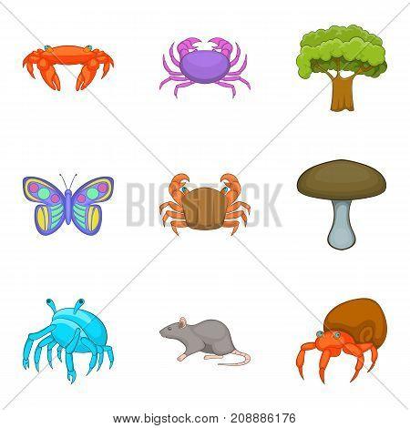 Arthropod icons set. Cartoon set of 9 arthropod vector icons for web isolated on white background