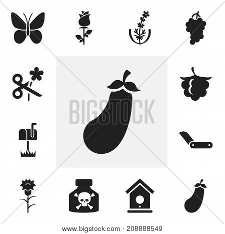 Set Of 12 Editable Planting Icons. Includes Symbols Such As Cluster, Blackberry, Trimming And More