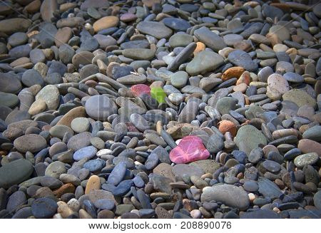 Pebble stones background. Abstract background and texture with colorful pebbles. Stone texture and background. The decoration of the garden. Abstract textures and backgrounds for designers. Macro view of colored pebbles