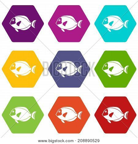 Surgeon fish icon set many color hexahedron isolated on white vector illustration