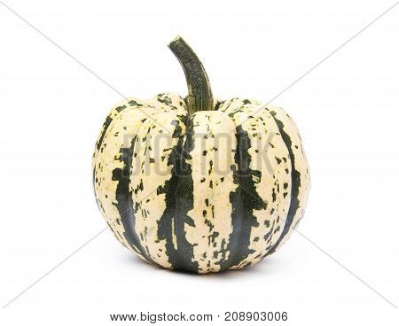 Sweet dumpling pumpkin isolated on a white background