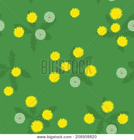 Summer or spring glade of yellow and white dandelions on green seamless pattern