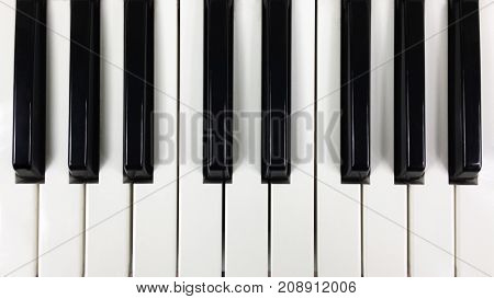 Black and white keys of the keyboard synthesizer