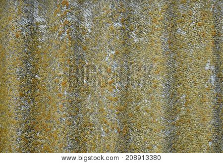 Lichen-covered Old Wavy Slate Background. Aged Wavy Slate With Moss, Lichen Close-up