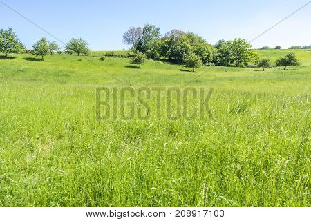 idyllic rural spring time scenery in Hohenlohe a area in Southern Germany