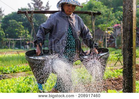 Woman Farmer In Hoi An, Vietnam