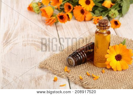 aromatherapy essential oil with fresh marigold flowers on white wooden background. Calendula oil.