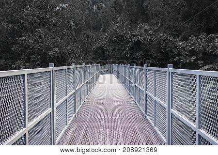 Canopy Walkway at Queen Sirikit Botanic Gardens Chiang Mai Thailand.