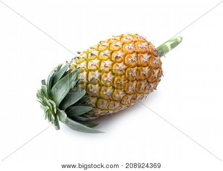 ripe pineapple on white background. healthy pineapple fruit food isolated
