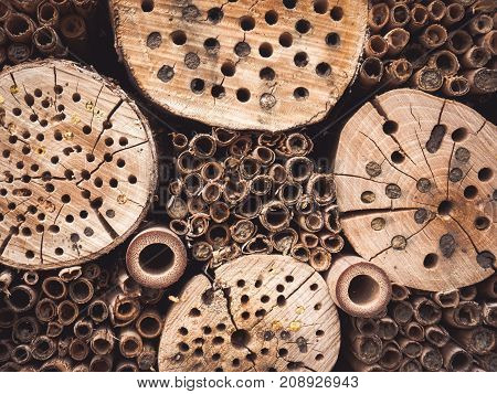 Wooden insect hotel for different types of insects.