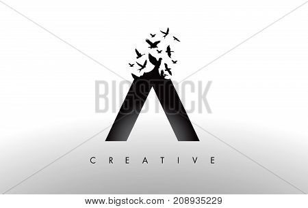A Logo Letter With Flock Of Birds Flying And Disintegrating From The Letter.