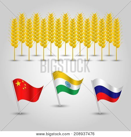 vector infographics - set of three flags of states with biggest production of wheat and several grain cobs - countries china india and russia