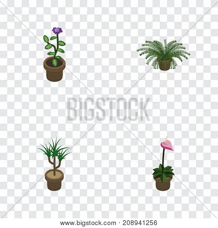 Isometric Houseplant Set Of Flower, Houseplant, Grower And Other Vector Objects