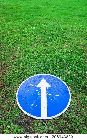 Ahead Only, Blue Road Sign Lays On Lawn