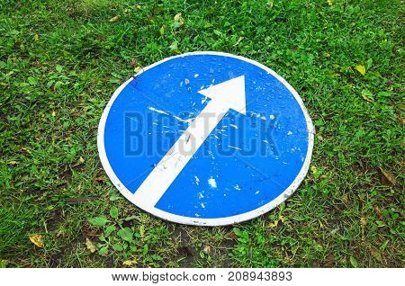 Ahead Only, Round Blue Road Sign On Grass