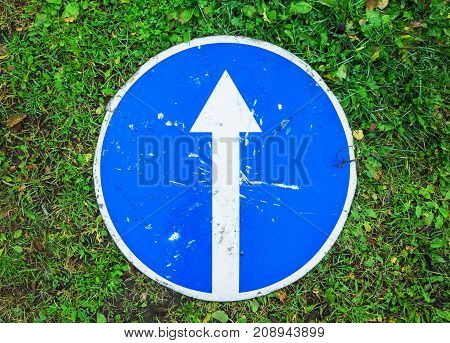 Ahead Only, Blue Road Sign Lays On Grass