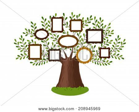 Genealogical family tree with picture frames. Pedigree concept. Vector illustration