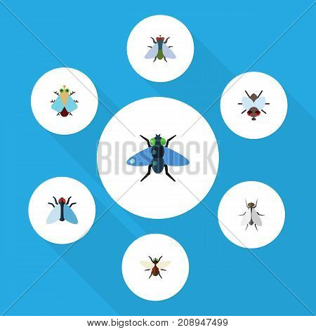 Flat Icon Housefly Set Of Dung, Fly, Bluebottle And Other Vector Objects