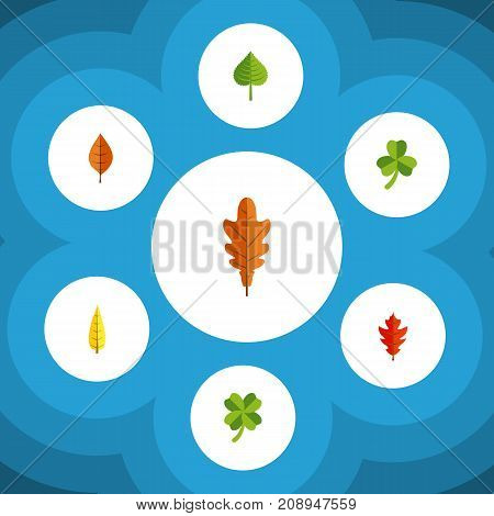 Flat Icon Foliage Set Of Foliage, Hickory, Leaf And Other Vector Objects