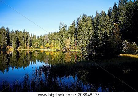 Mirroring on the water level of the Vrbicke tarn in Demanovska valley in Slovakia. Autumn colors of trees in the water surface mirror. Beautiful Slovakia.