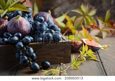 Fresh Black Grapes and Figs in Dark Wooden Tray on Wooden Table Selective focus