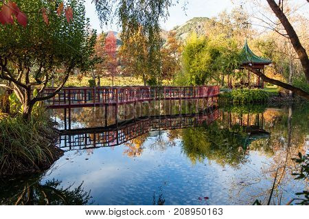 A calm pond reflecting a red bridge and Japanese gazebo in a park like setting during fall in California.