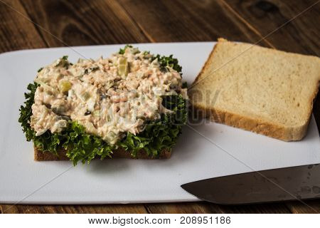 the tuna pickles sandwich with salad on white plate