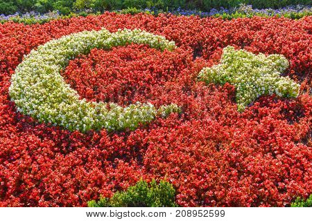 Turkish flag made with flowers