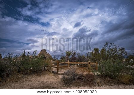 Storm clouds passing through the Mojave Desert in Joshua Tree show a surreal dusk setting along a campground trail.