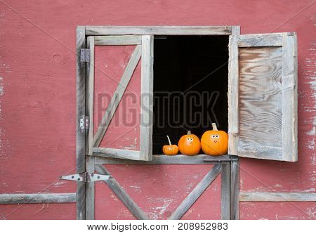 Pumpkins in barn window