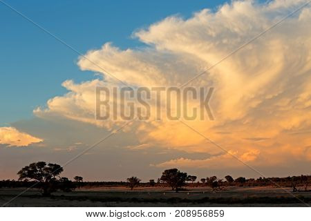 Dramatic late afternoon cloudscape over the Kalahari desert, South Africa