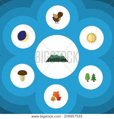 Flat Icon Bio Set Of Bird, Half Moon, Canadian And Other Vector Objects