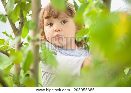 Cute funny baby playing hide and seek game outdoors on warm summer day.