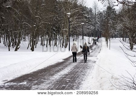Winter landscape. A sidewalk in a winter park and walking people